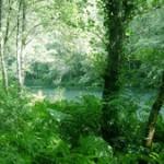 Parque natural de las Fragas do Eume
