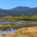Urdaibai, Reserva de la biosfera