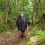 Consejos para el Camino de Santiago