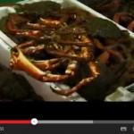 Video de O Grove