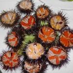 Festival del Oricio de Bañugues