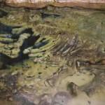La Cueva del Rinoceronte, La Peruyal